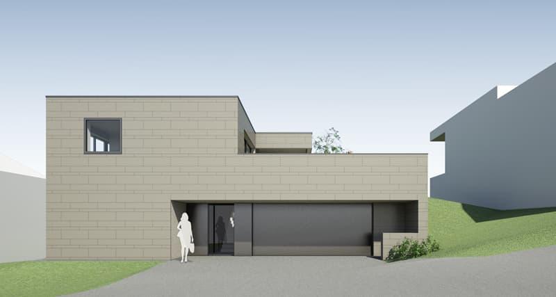 einfamilienhaus neubau freidorf ch. Black Bedroom Furniture Sets. Home Design Ideas